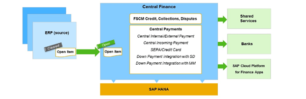 Central Payment in S/4HANA Central Finance